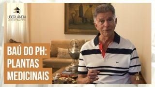 Paulo Henrique Petri relembra as propriedades das plantas medicinais